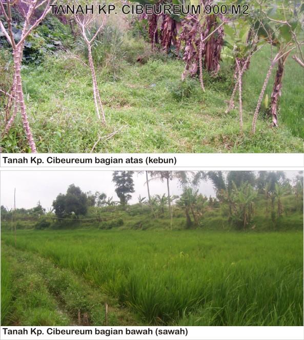 tanah cibeureum sukanasgalih 1400